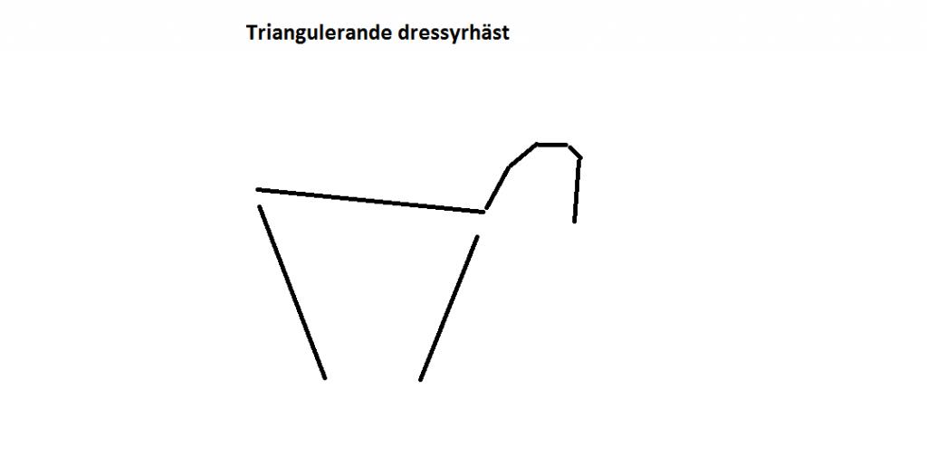 tiangulerande-dressyrhast